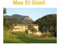 el_gell