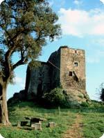 Castell Vinyeta
