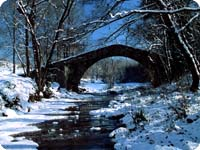 Pont Riera